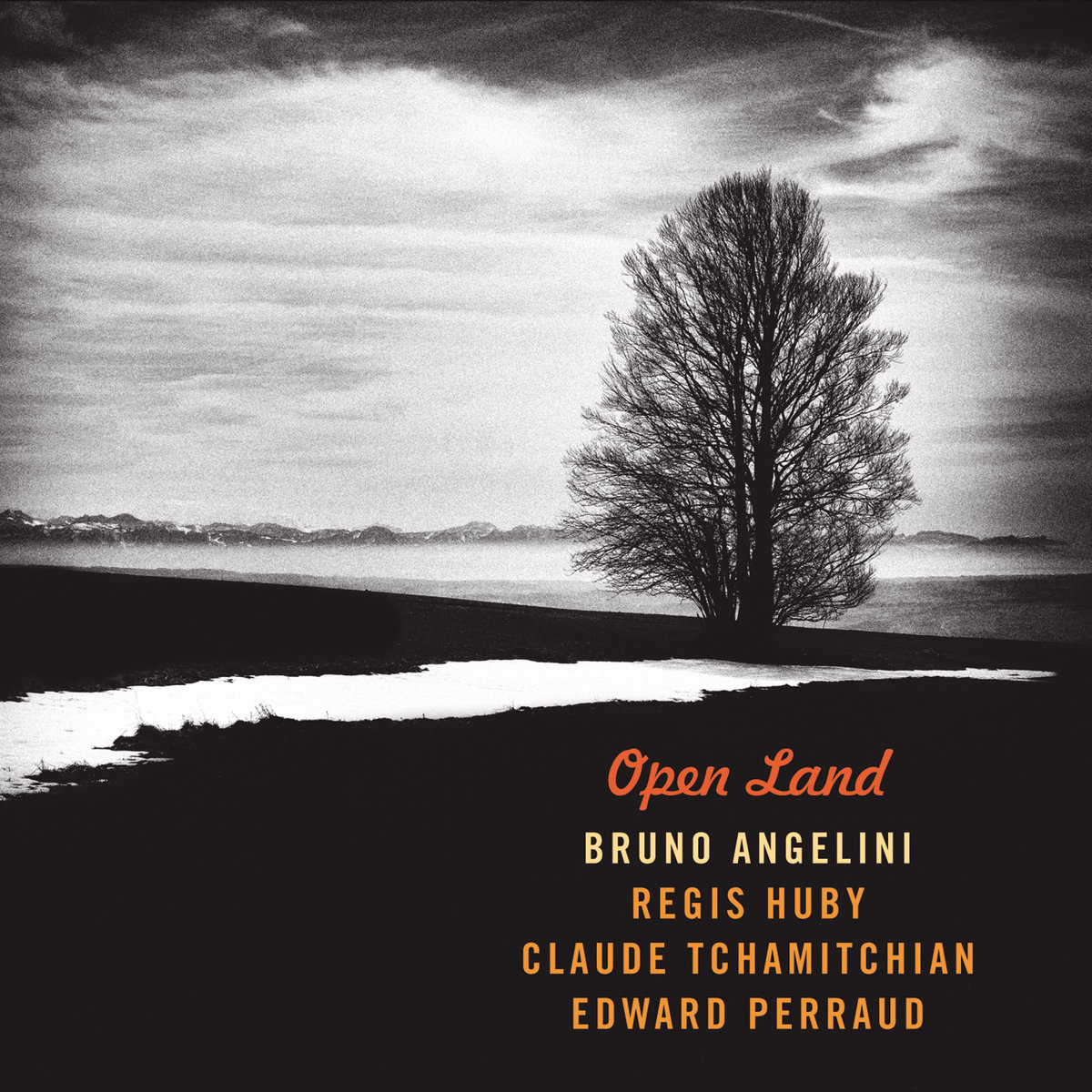 Open Land-angelini